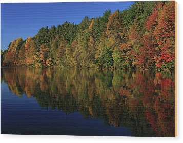 Autumn Reflection Of Colors Wood Print by Karol Livote