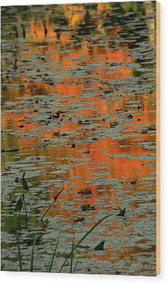 Autumn Reflection Wood Print