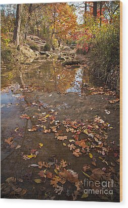 Autumn Reflections Wood Print by Iris Greenwell