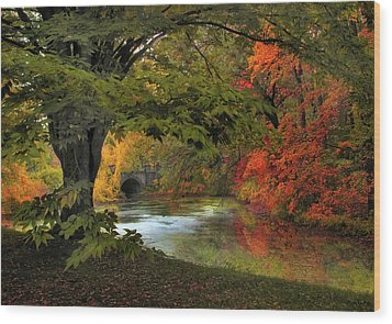 Wood Print featuring the photograph Autumn Reverie by Jessica Jenney