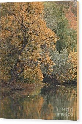 Autumn Riverbank Wood Print by Carol Groenen