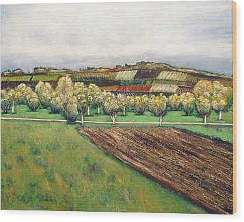 Autumn Road Wood Print by Vladimir Kezerashvili