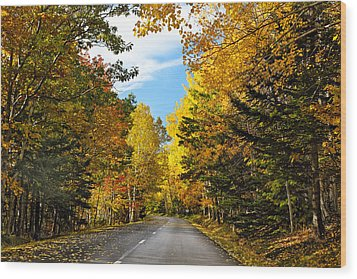 Autumn Scenic Drive Wood Print by George Oze