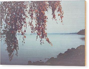 Wood Print featuring the photograph Autumn Shore by Ari Salmela