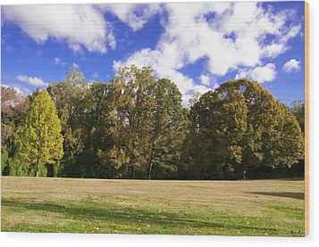 Autumn Skies Wood Print by Bill Cannon