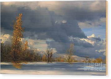 Wood Print featuring the photograph Autumn Skies  by Elfriede Fulda