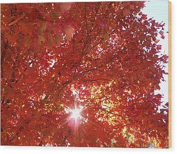 Autumn Sky IIi Wood Print by Anna Villarreal Garbis