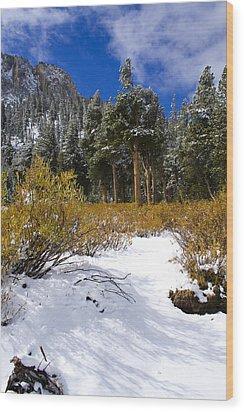 Autumn Snow Wood Print by Chris Brannen