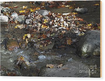 Autumn Soup Wood Print by Diane E Berry