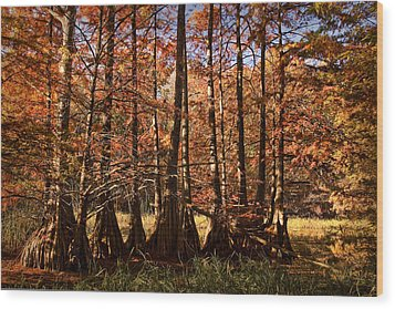 Wood Print featuring the photograph Autumn Splendor At Lake Murray by Tamyra Ayles