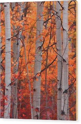 Autumn Splendor Wood Print by Don Schwartz