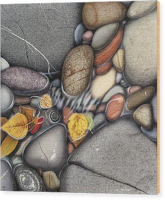 Autumn Stones Wood Print