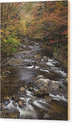 Autumn Stream Wood Print by Andrew Soundarajan