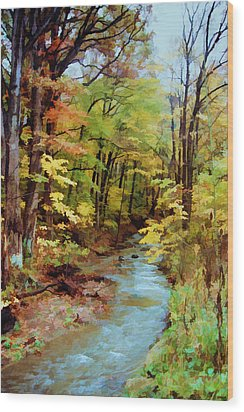 Wood Print featuring the photograph Autumn Stream by Diane Alexander