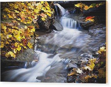Autumn Stream No 2 Wood Print by Kamil Swiatek