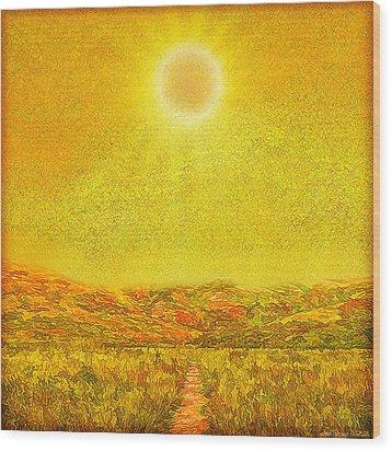 Wood Print featuring the digital art Golden Sunlit Path - Marin California by Joel Bruce Wallach