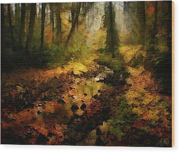 Autumn Sunrays Wood Print by Gun Legler