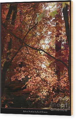 Autumn Sunshine Poster Wood Print by Carol Groenen