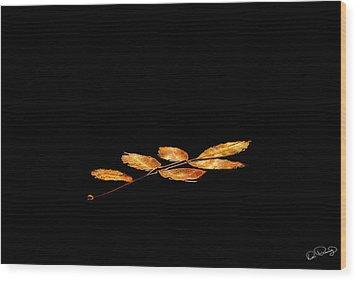 Autumn Suspended Wood Print