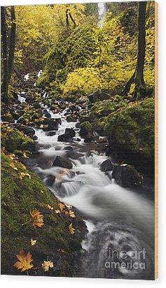 Autumn Swirl Wood Print by Mike  Dawson
