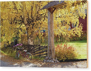 Rural Rustic Autumn Wood Print