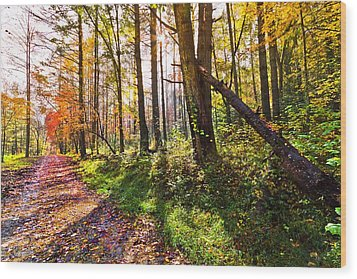 Autumn Trail Wood Print by Debra and Dave Vanderlaan