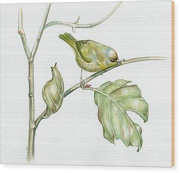 Autumn Traveller Wood Print by Darlene Watters