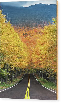 Autumn Tree Tunnel Wood Print