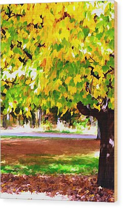 Autumn Trees 6 Wood Print by Lanjee Chee