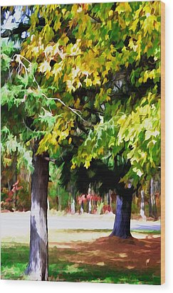 Autumn Trees 7 Wood Print by Lanjee Chee