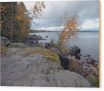 Wood Print featuring the photograph Autumn View 4 by Sami Tiainen