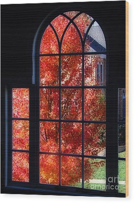 Autumn View Thru A Picture Window Wood Print by Sue Melvin