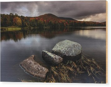 Wood Print featuring the photograph Autumn Visit by Mike Lang