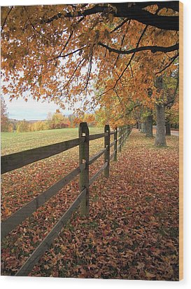 Autumn Vista In Virginia Wood Print by Don Struke