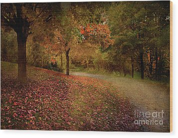 Wood Print featuring the photograph Autumn Walk by Elaine Manley