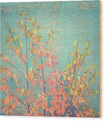 Wood Print featuring the photograph Autumn Wall by Ari Salmela
