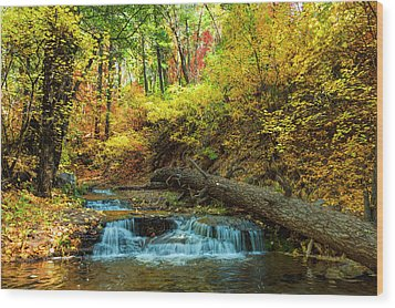 Wood Print featuring the photograph Autumn Waterfall by Anthony Citro