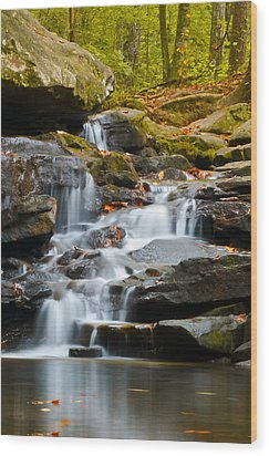 Autumn Waterfall Wood Print by Shelby  Young