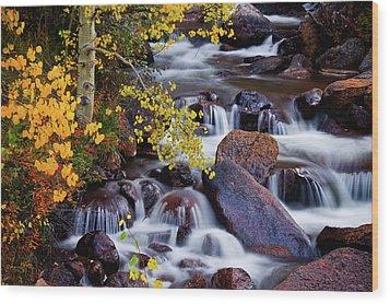 Wood Print featuring the photograph Autumn Zen by John De Bord