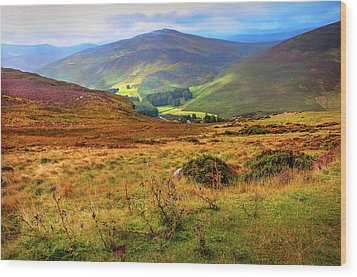 Wood Print featuring the photograph Autumnal Hills. Wicklow. Ireland by Jenny Rainbow