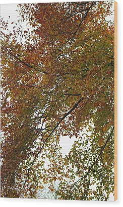 Wood Print featuring the photograph Autumn's Abstract by Deborah  Crew-Johnson
