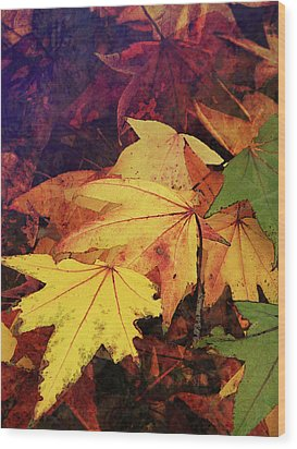 Autumns Colors Wood Print by Robert Ball