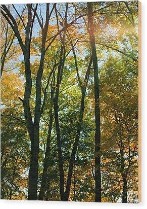 Autumns Glory Wood Print