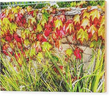 Autumn's Kiss Wood Print