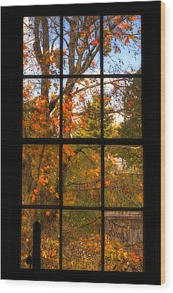 Autumn's Palette Wood Print by Joann Vitali
