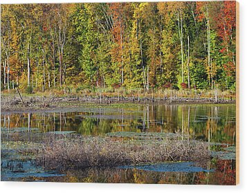 Wood Print featuring the photograph Autumns Quiet Moment by Karol Livote