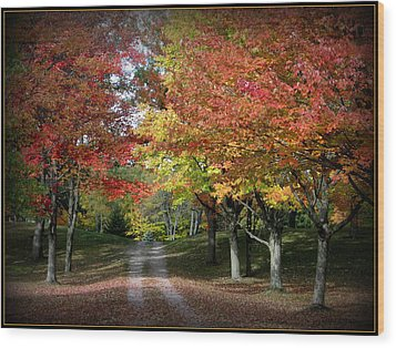 Autumn's Walk Wood Print by Trina Prenzi