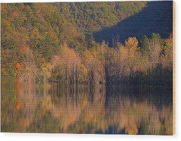Autunno In Liguria - Autumn In Liguria 1 Wood Print