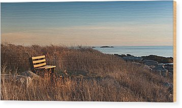 Wood Print featuring the photograph Available Seating by Robin-Lee Vieira