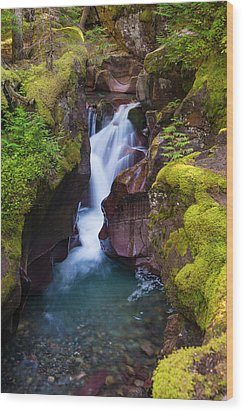 Wood Print featuring the photograph Avalanche Gorge 4 by Gary Lengyel